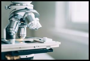 Delta Health Center | Laboratory & X-Rays | Mississippi Delta
